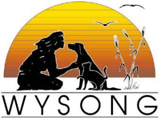 Wysong holistic dog food raw
